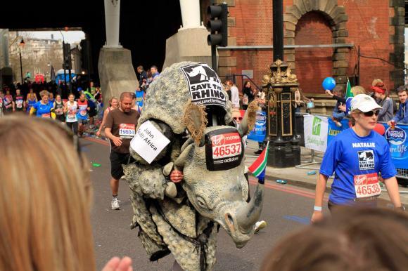 Running Rhinos...